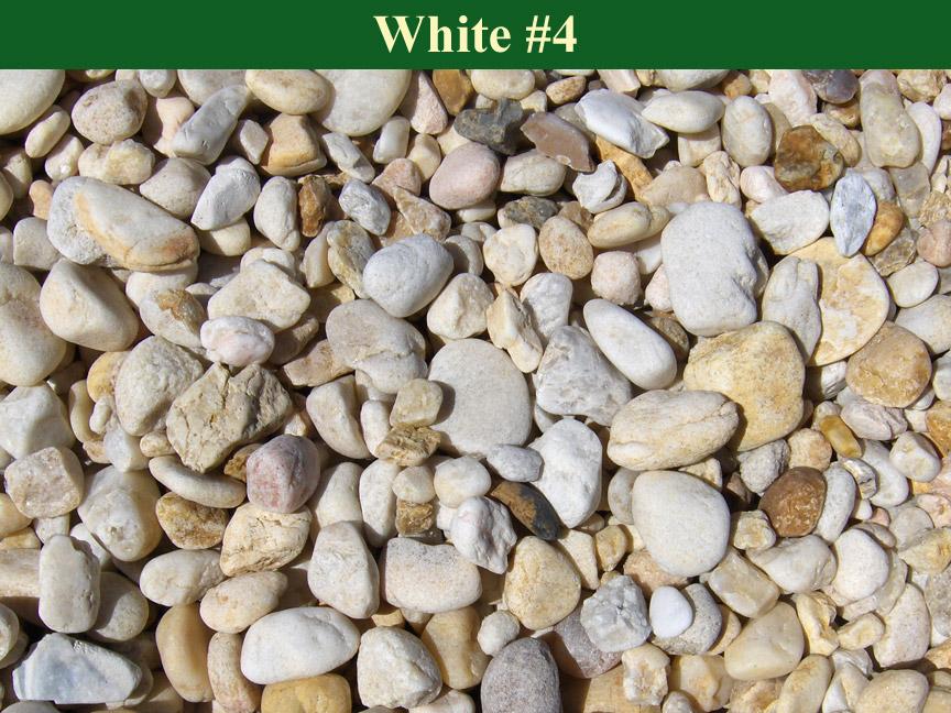 White-#4
