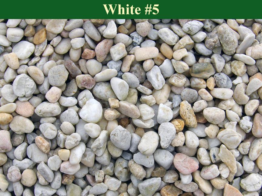 White-#5
