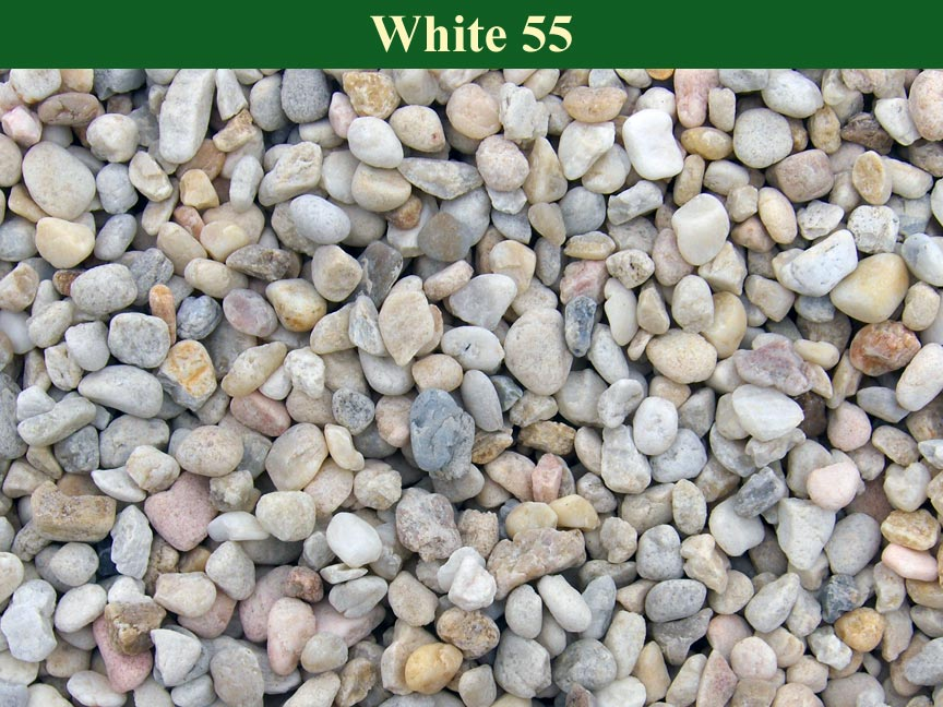 White-55