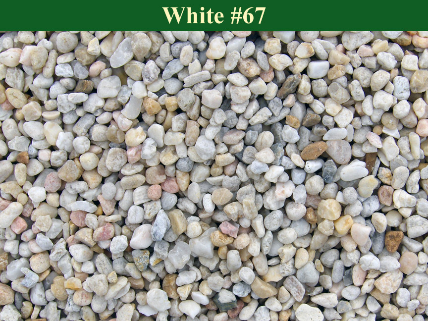 White-#67