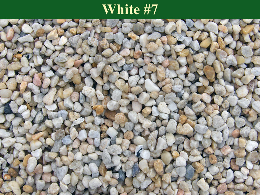 White-#7