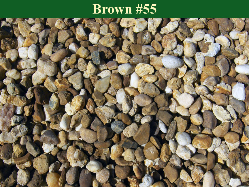 Brown-55