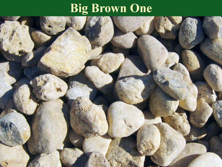 Brown-Big-Brown-One