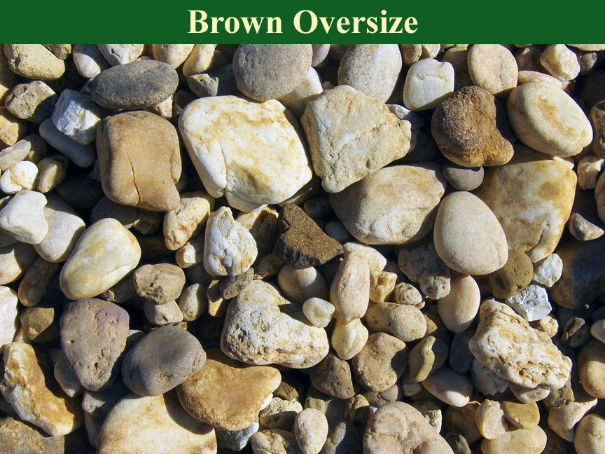 Brown-Oversize