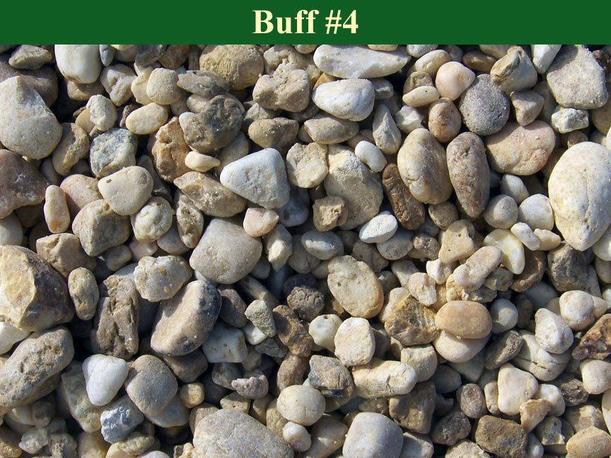 Buff-#4