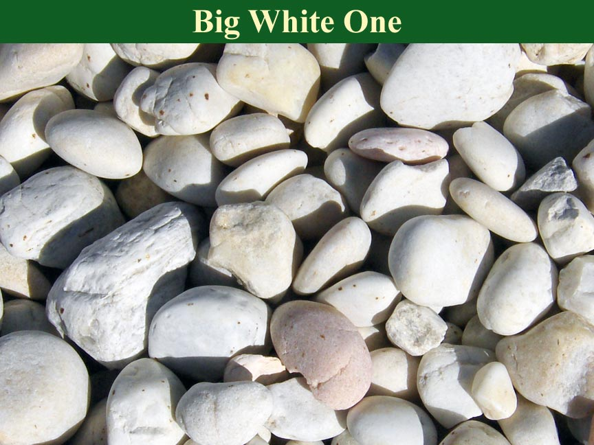 White-Big-White-One